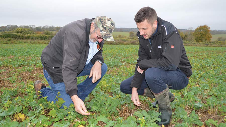 Jim Farquharson (left) and Todd Jex (right) in oilseed rape crop