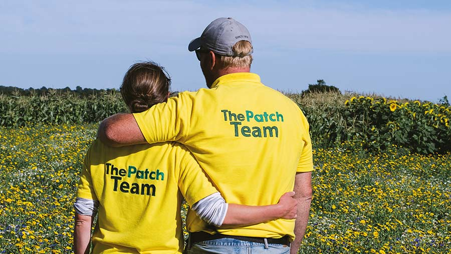 Joe and Roz Gurney in sunflower field