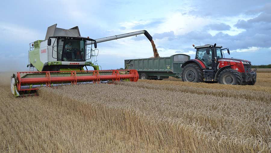 Combine in wheat field on Tim Lamyman's farm