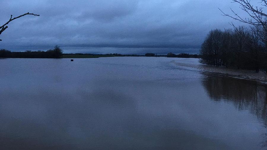Field under water