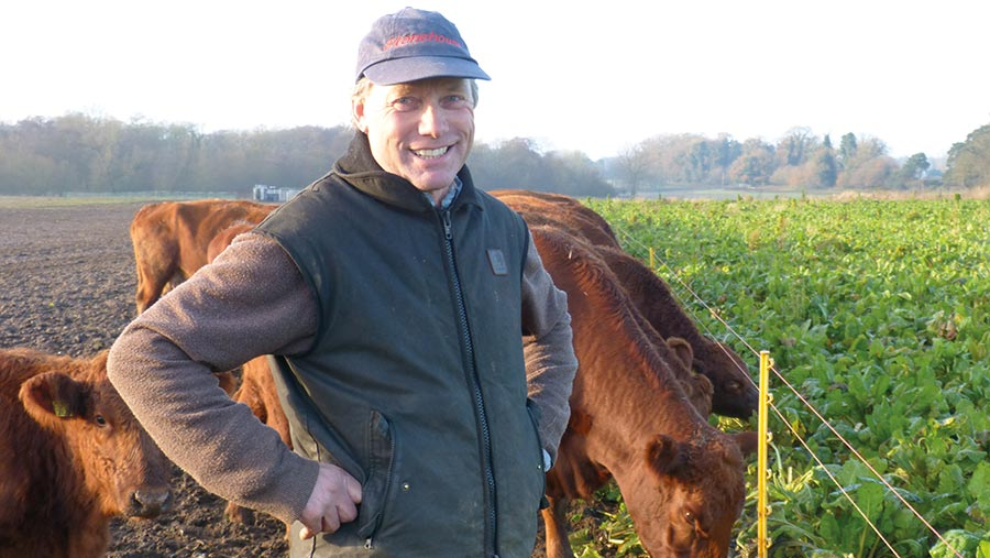 Richard Evans with cattle
