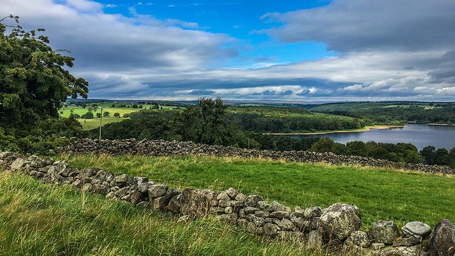 View of Swinsty Reservoir from Scow Hall Farm