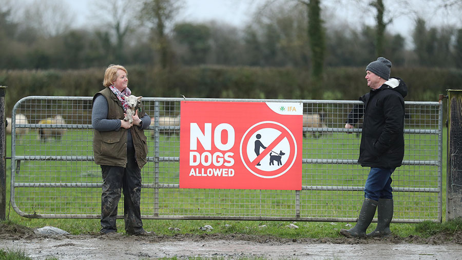 Sheep farmer Marita Phelan and IFA Sheep Chairman Sean Dennehy at the launch of IFA's 'No Dogs Allowed' campaign banning dogs from farmland due to the increasing number of attacks on livestock