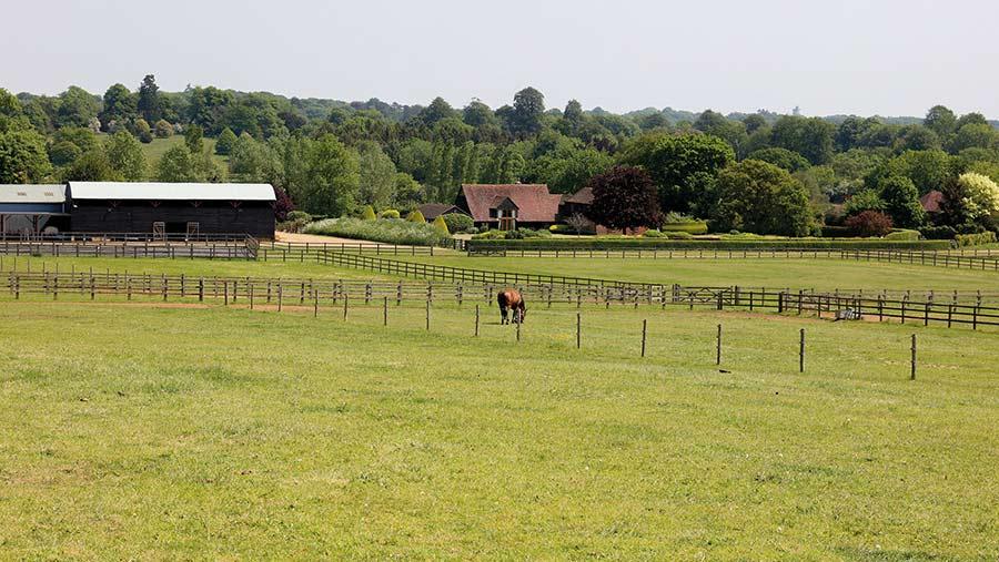 Suffield Farm, near Guildford