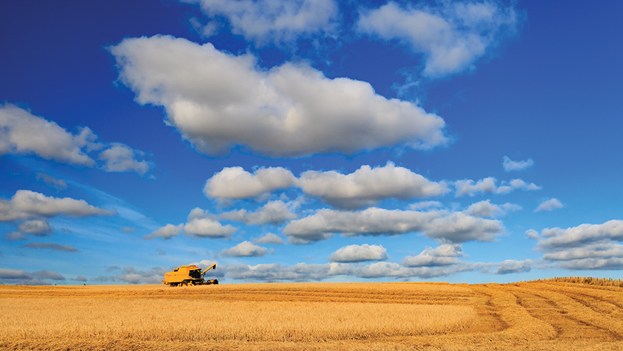 The scenery may look beautiful, but farming can be a tough and, at times, lonely career © Adobe Stock/Bomboman