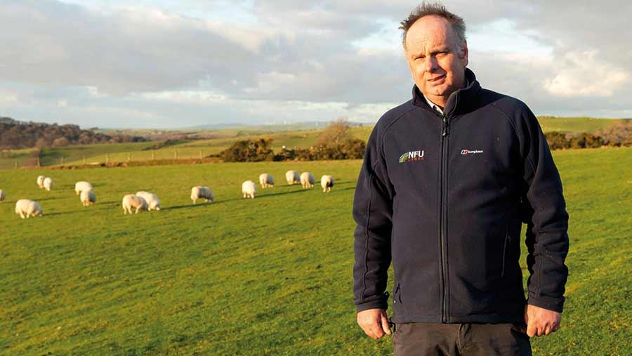 Farmer Wyn Evans with sheep