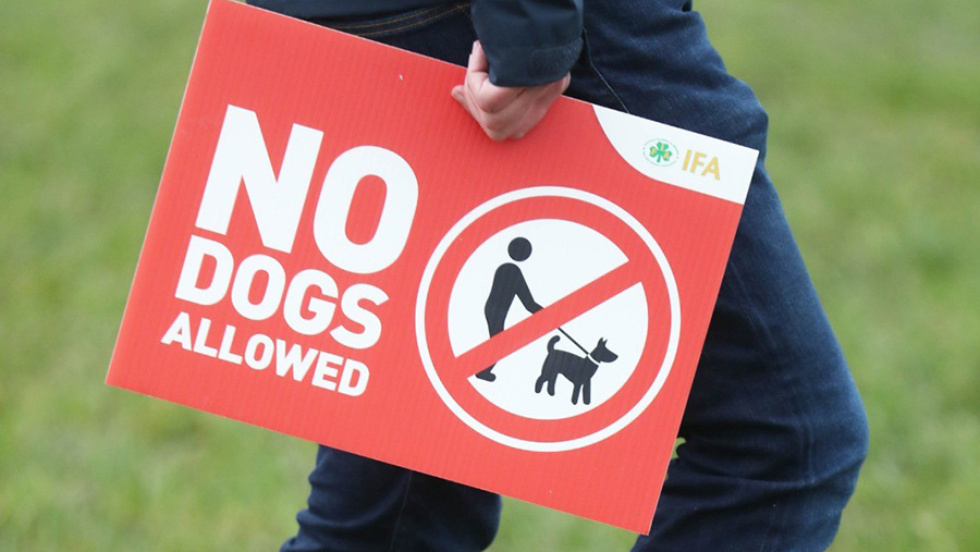 Person carrying 'No dogs allowed' sign