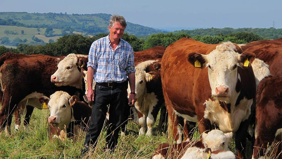 Ian Boyd in field with cows