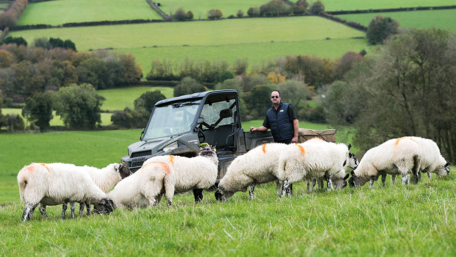 Adrian Coombe in field with sheep