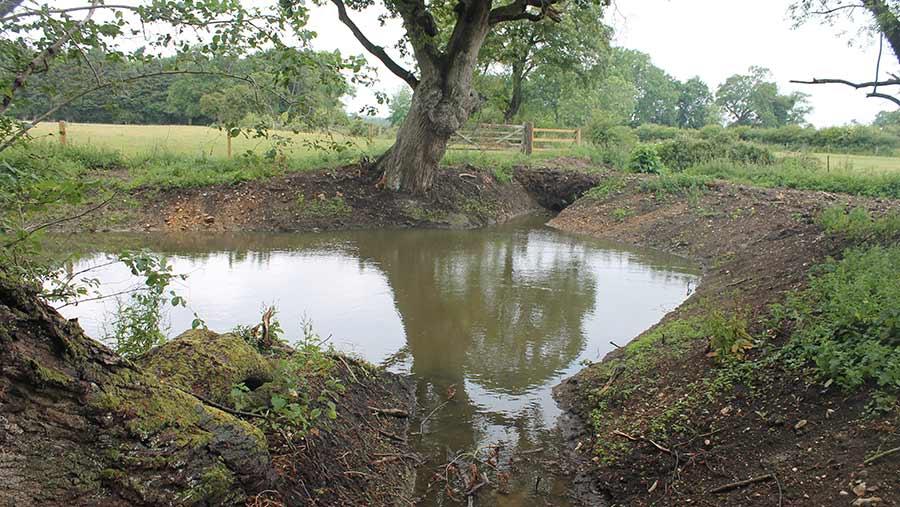 Re-dug ghost pond