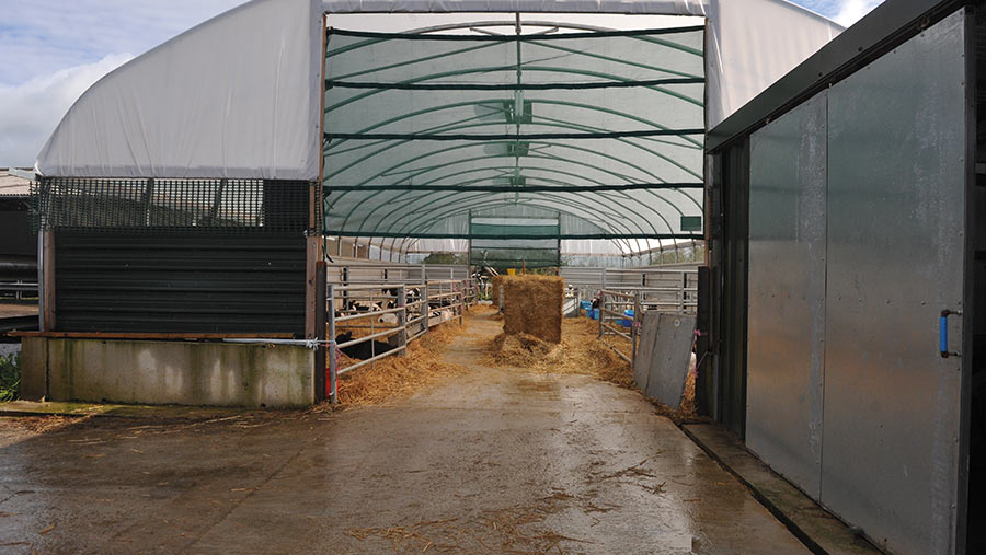 Entrance to the group pens
