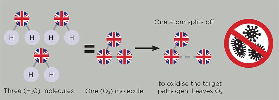Oxidation process graph