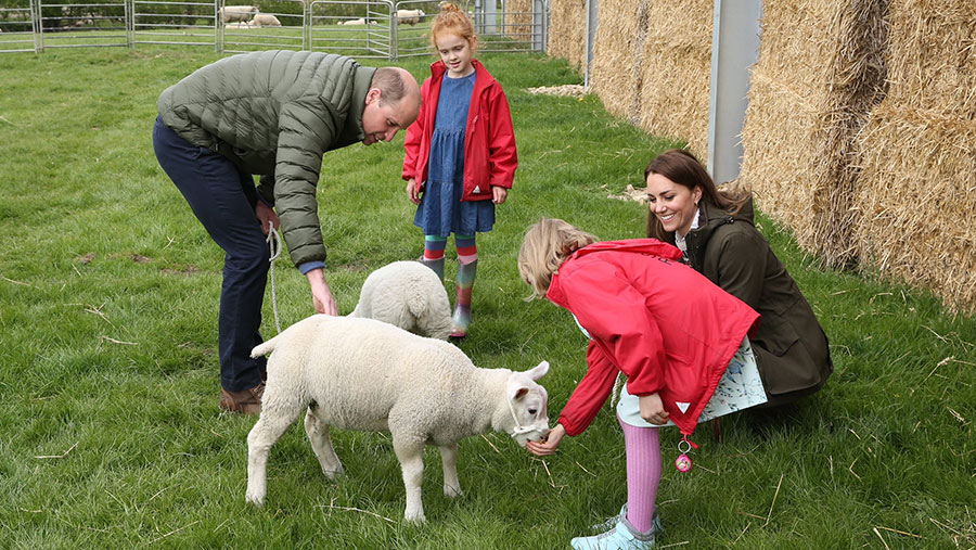 Duke and Duchess of Cambridge with children and lambs