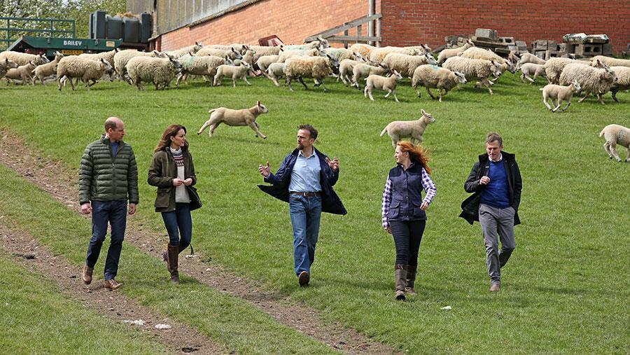 Duke and Duchess of Cambridge walk on farm with farmers