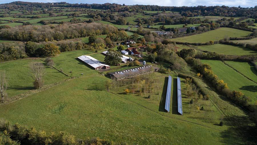 Old Brickyard Farm, near Shaftesbury in Dorset
