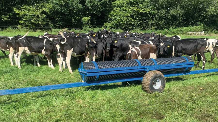 Wheeled feed trough surrounded by cows