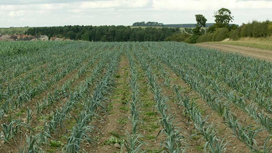 Retail demand for organic produce has grown during lockdown © Tim Scrivener