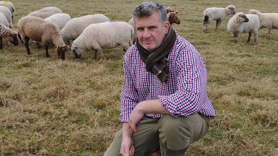 Cameron Farquharson said dog worrying laws must be changed to protect livestock © Debbie James