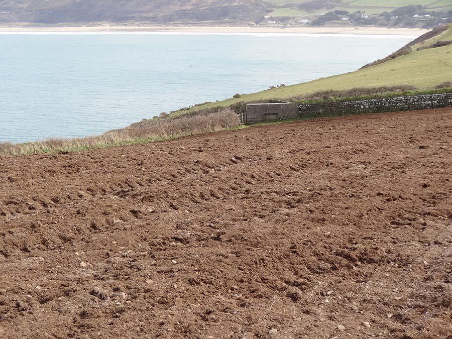 Fields in Devon