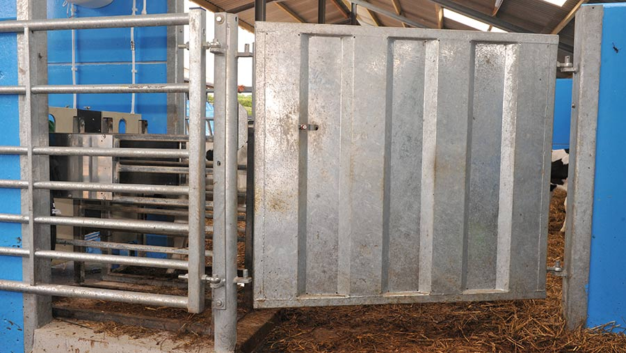 Gate to separate calf pens from feeding station