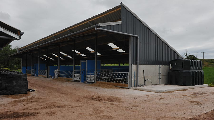 View of new shed showing open front and sloping roof