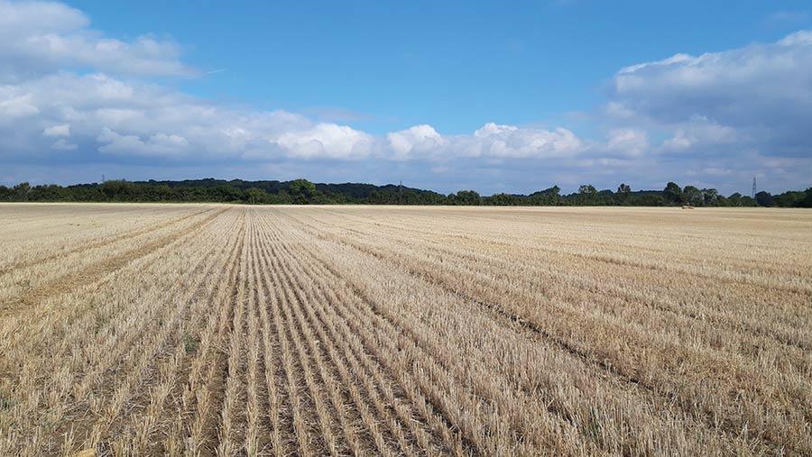 Corby Glen, near Grantham, Lincolnshire