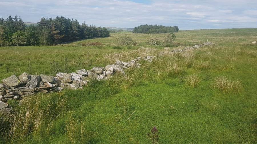 Ty Nant Eidda, near Betws y Coed, in Conwy