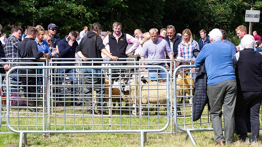 A busy ringside watching judging at Kinross