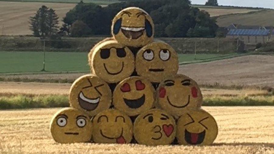 Emojis painted on bales
