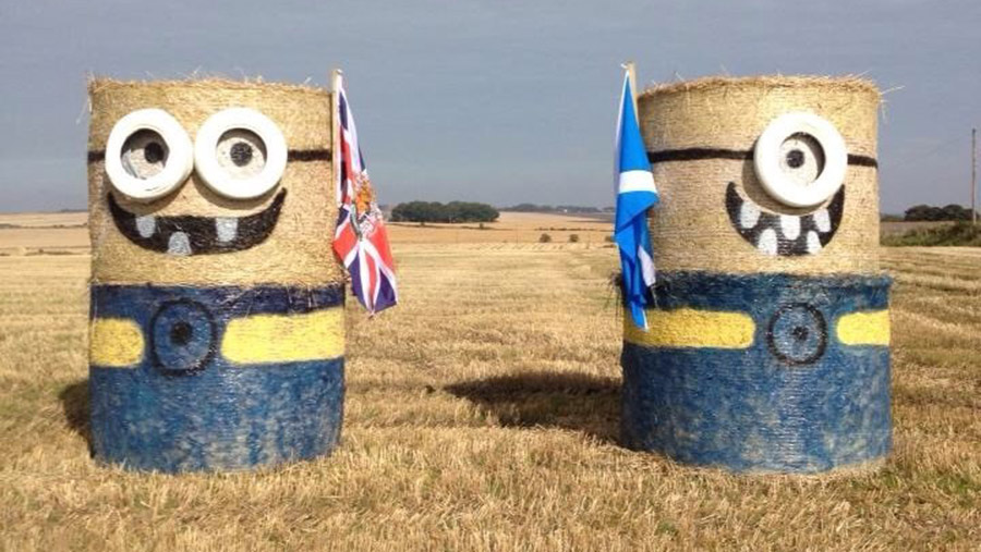 Minions painted on bales