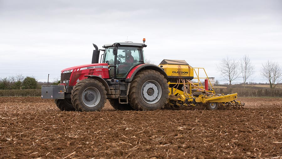 Direct-drilling spring wheat