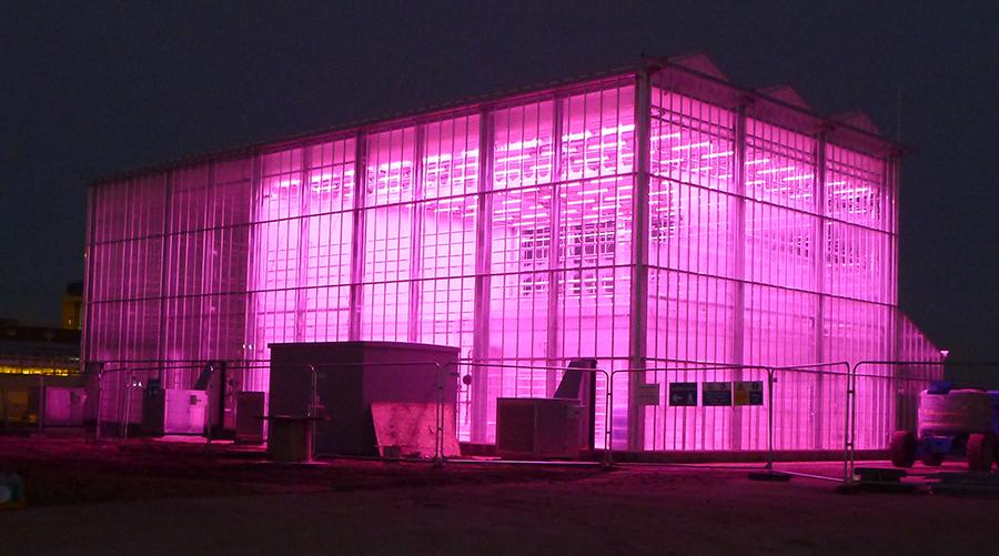External glass house at night