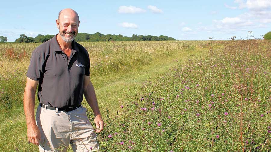 Farmer stands in a field margin