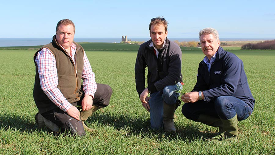 From left: Agronomist James Rimmer, Kent grower Antony Redsell and Niab Tag's Bill Clark with Reculver Tower in the distance © Oli Hill/RBI