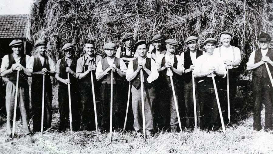 Farm workers at Rabbit Hill Farm