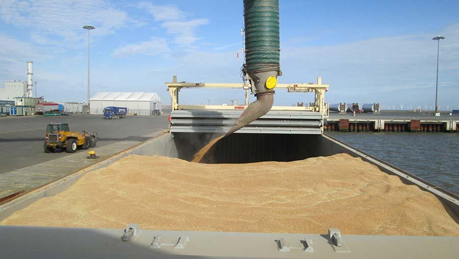 Grain pouring into grain ship