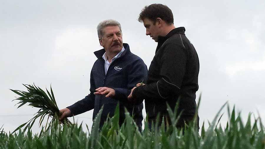 Bill Clark and John Haynes discuss T2 fungicide plans in Essex