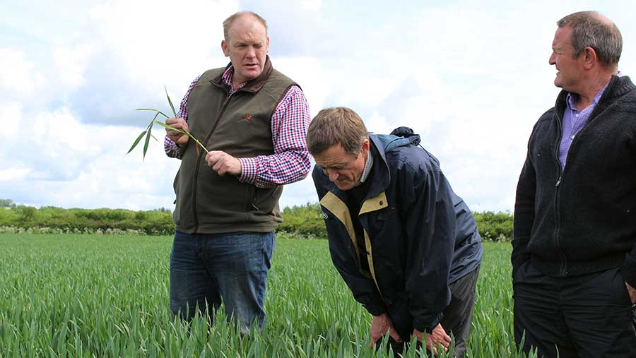 Farm manager Mark Wood, Niab's Richard Overthrow and Syngenta's Mel Codd discuss T2 sprays in Herefordshire © Oli Hill/RBI