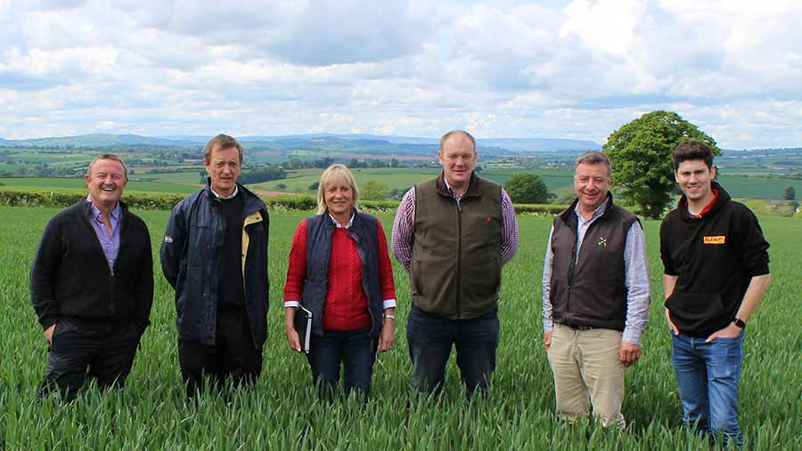 From left: Syngenta area manager Mel Codd, Niab Tag's Richard Overthrow, Farmers Weekly's Louise Impey, farm manager Mark Wood, Hutchinson agronomist Andrew Goodinson and Farmers Weekly's Oli Hill in Herefordshire © Oli Hill/RBI