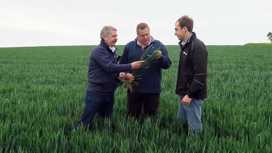 Bill Clark, James Rimmer and Antony Redsell inspect the crop in Kent
