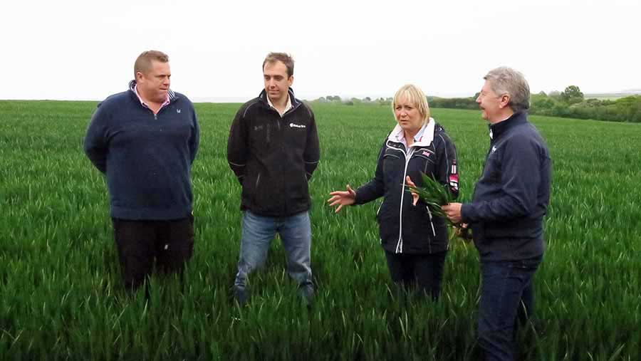 From left, agronomist James Rimmer, farmer Antony Redsell, Farmers Weekly's Louise Impey and Bill Clark of Niab Tag