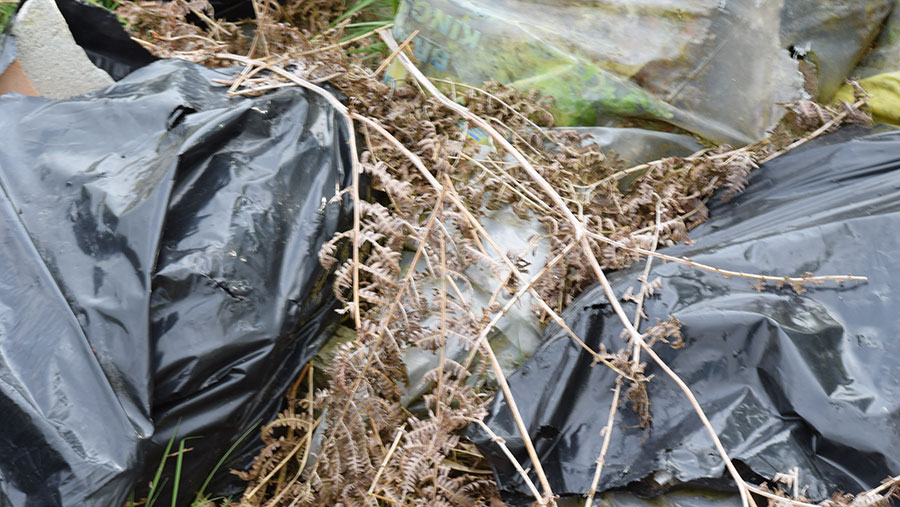 A close up showing fly-tipped waste including sheep carcasses in bags