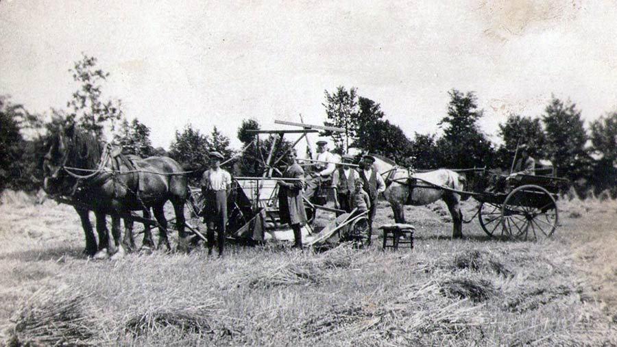 Rosemary Pugh farming family