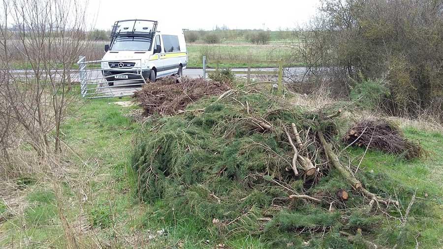 Tree clippings left dumped in a field
