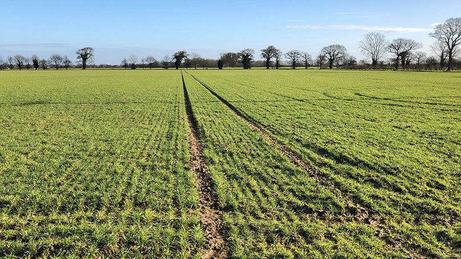 A field at Coxhill Farm