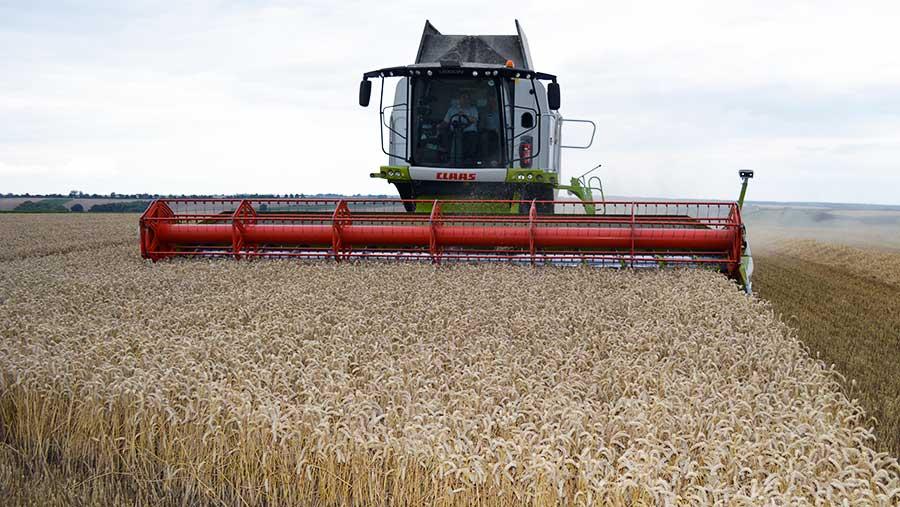 Tim Lamyman wheat harvest © David Jones/RBI