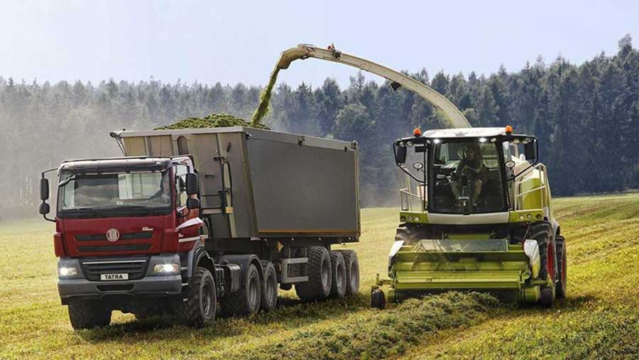 Tatra truck in a field during harvest