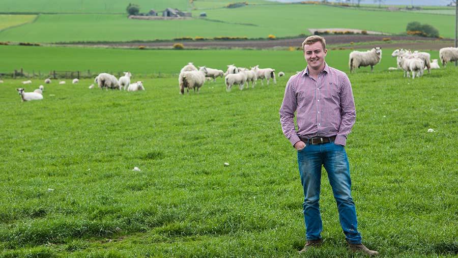 Rory Stodart with the farm's flock of breeding ewes © Alan Richardson