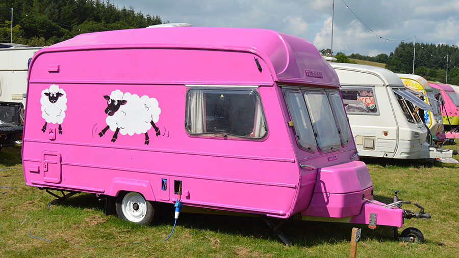 A pink sheep-themed caravan at the Royal Welsh