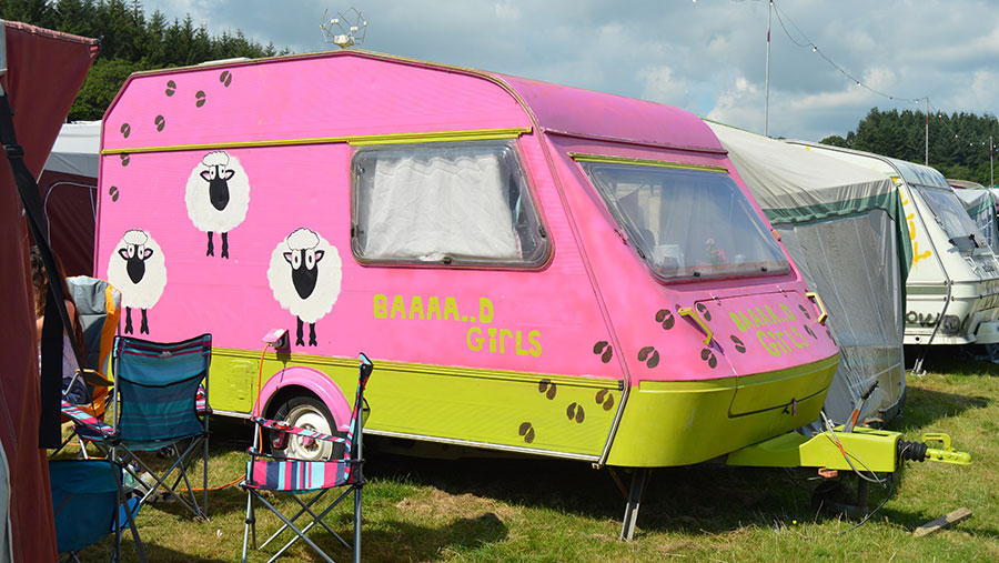 A pink and green caravan with sheep-themed decoration